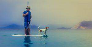 pet-insurance-Elkton-MD_Mccool Insurance