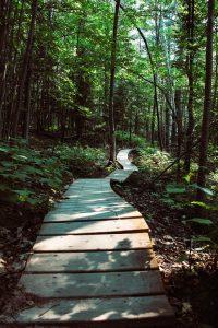hiking_elkton_MD-mccool insurance agency-cecil county